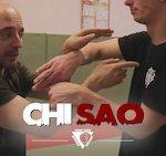 Wing Chun : Démonstration du Chi Sao